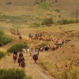 Escena de 'Padres lejanos' con los participantes guiando la manada