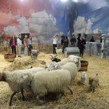 Los concursantes de 'Gran Hermano catorce' en la granja