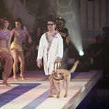 Serafín Zubiri y su perro Kron en 'Splash! Famosos al agua'