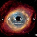 Cartel de la serie de documentales 'Cosmos. A Spacetime Odyssey' para la Comic-Con 2013