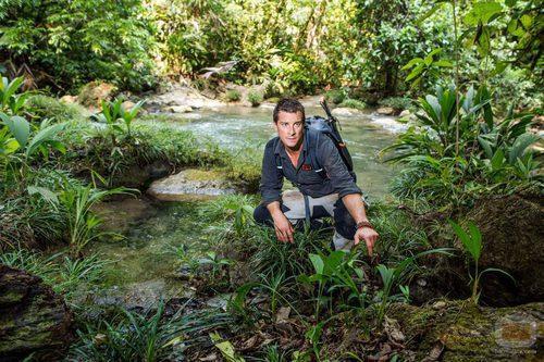 Bear Gylls en la selva durante un programa de 'Escapar del infierno'