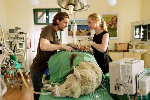 El veterinario y la médico en 'Bienvenida al pueblo, doctora'