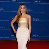 Sofia Vergara acude a la Cena de Corresponsales de la Casa Blanca 2014
