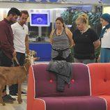 Hugo, José, Mayca, Loli, Shaima y la cabra en 'Gran Hermano 15'