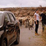 Héctor y Lola con el rebaño de ovejas en 'Mar de plástico'