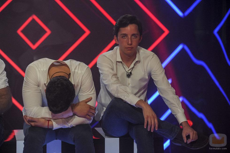 Alejandro Nieto y Francisco Nicolás en la gala 12 de 'Gran Hermano VIP'