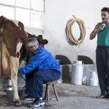 Vicente ordeña una vaca en 'La que se avecina'
