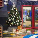 El árbol de Navidad de 'Gran Hermano 17'