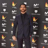 Alfonso Bassave en la alfombra roja de los Premios Feroz 2017