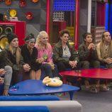 Los concursantes de 'GH VIP 5' escuchan la decisión final