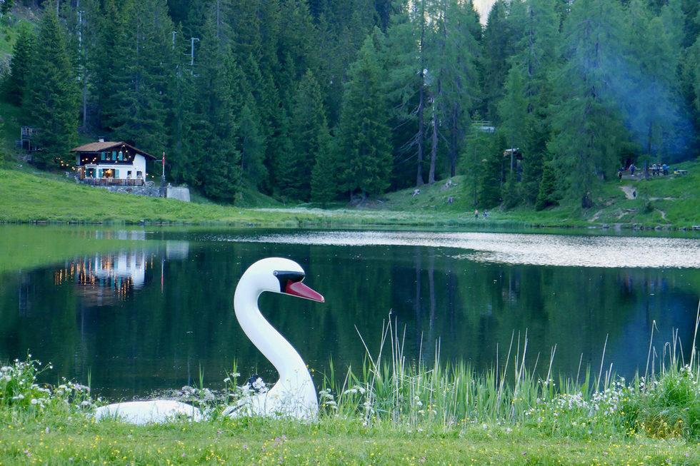 El verdoso paisaje en el que se desarrolla el programa 'Hotel Romántico'