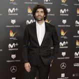 Tamar Novas posa en la alfombra roja de los Premios Feroz 2018