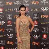 Mónica Cruz posa en la alfombra roja de los Premios Goya 2018