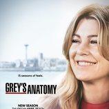 Póster de la 15ª temporada de 'Anatomía de Grey'