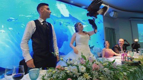Dos novios celebran su boda en un acuario en 'Cuatro Weddings'