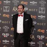 Karra Elejalde posa en la alfombra roja de los Premios Goya 2019