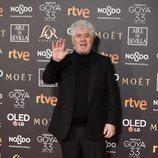 Pedro Almodóvar en la alfombra de los Premios Goya 2019