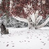 Bran Stark, sentado frente el Arciano en el 8x02 de 'Juego de Tronos'