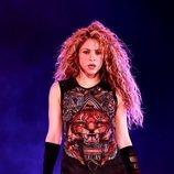 Shakira, durante un concierto en diciembre de 2018