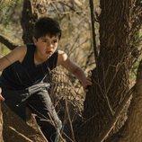 Joan entre los árboles en el secuestro de Soledad en 'Perdida'