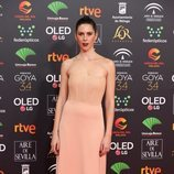 Bárbara Santacruz en la alfombra roja de los Premios Goya 2020