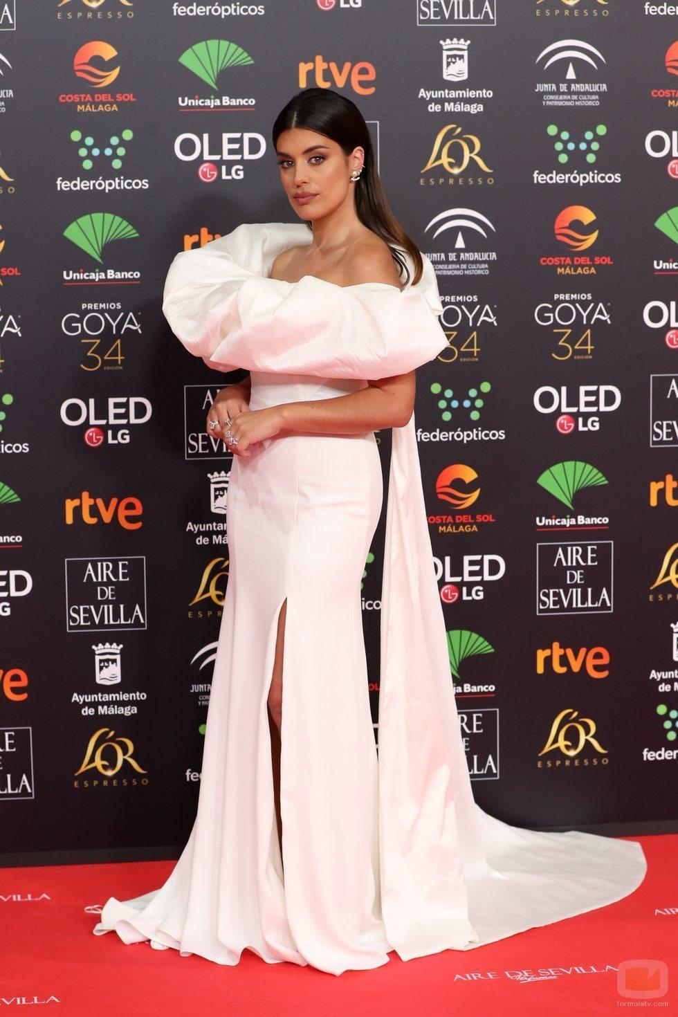Dulceida posa en la alfombra roja de los Premios Goya 2020