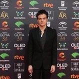 Jamie Cullum en la alfombra roja de los Premios Goya 2020