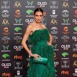 Nieves Álvarez poa en la alombra roja de los Premios Goya 2020