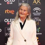Benedicta Sánchez posa en la alfombra roja de los Premios Goya 2020