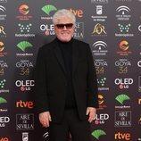 Pedro Almodóvar en la alfombra roja de los Premios Goya 2020