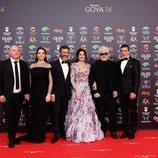 """Equipo de """"Dolor y gloria"""" en la alfombra roja de los Premios Goya 2020"""