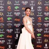 Bárbara Lennie posa en la alfombra roja de los Premios Goya 2020