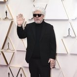 Pedro Almodóvar posa en la alfombra roja de los Oscar 2020