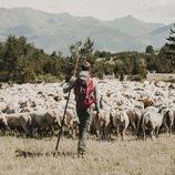 Zacarías Fievet es el presentador de 'Entre ovejas'