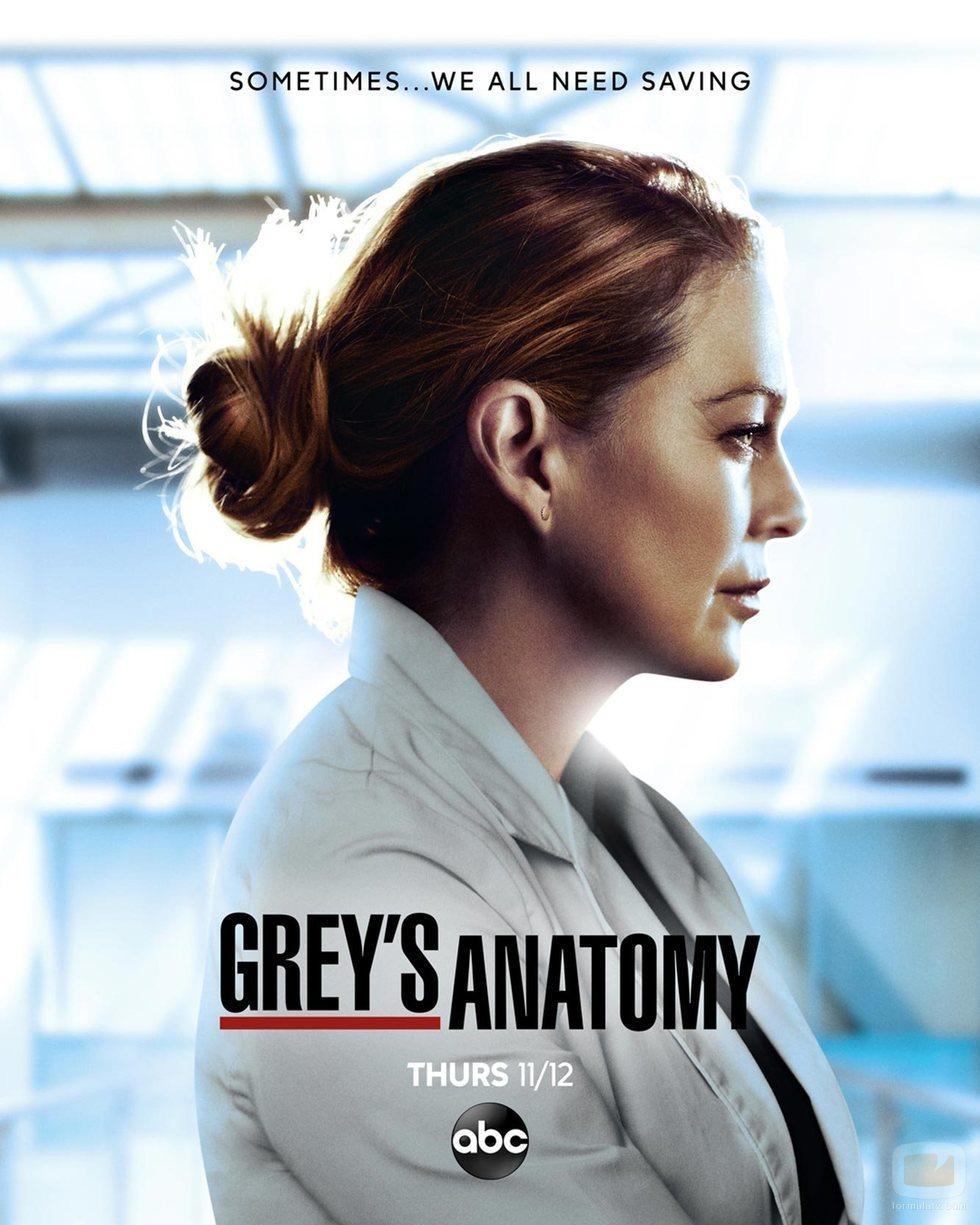 Cartel promocional de la temporada 17 de 'Anatomía de Grey'