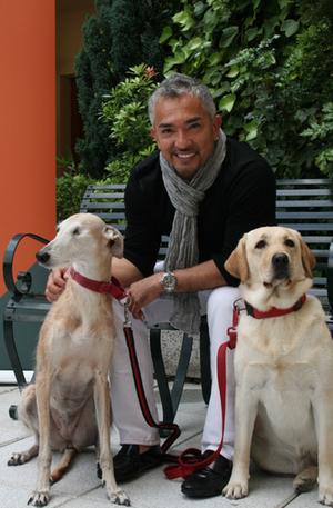 Cesar Millan El Lider De La Manada Presentador Cesar Millan | Dog ...