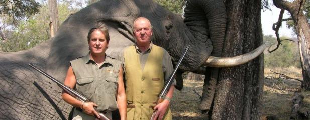 El Rey con un elefante muerto