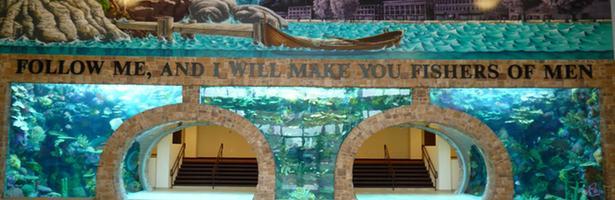 'Acuarios XXL' muestra la creación de acuarios dentro de lugares atípicos