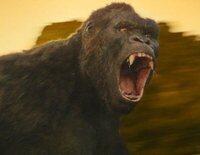 """Un grupo de exploradores se adentra en una misteriosa isla regentada por """"Kong: La isla Calavera"""""""