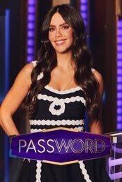 Cartel de Password
