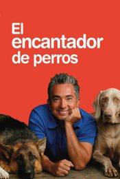 Cartel de El encantador de perros