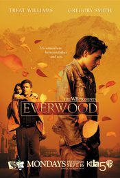 Cartel de Everwood