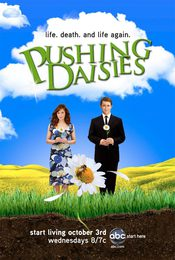 Cartel de Pushing Daisies