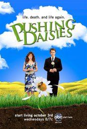 Cartel de Pushing Daisies