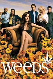 Cartel de Weeds