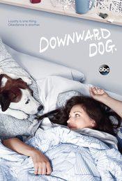 Cartel de Downward Dog