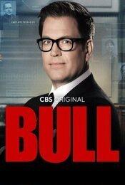 Cartel de Bull
