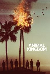 Cartel de Animal Kingdom