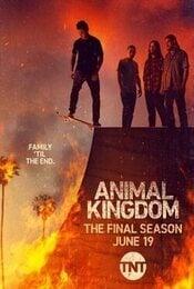 Cartel de Animal Kingdom