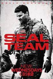 Cartel de SEAL Team
